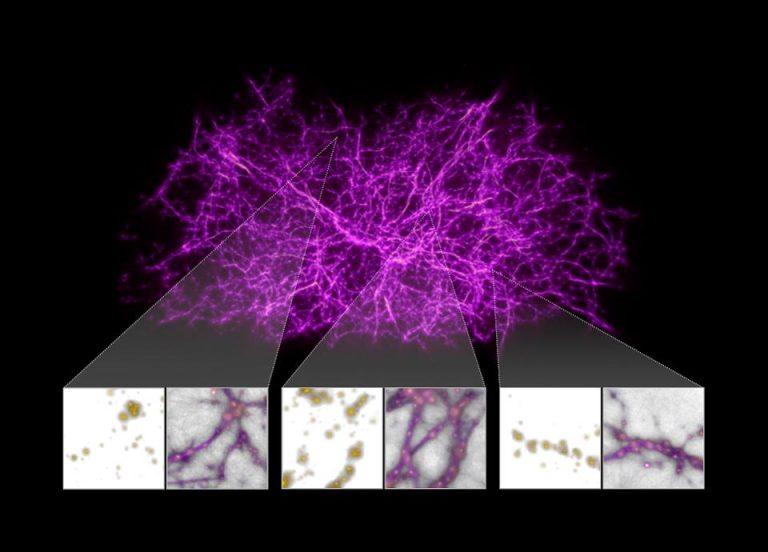 Οι αστρονόμοι αξιοποιούν τη μούχλα για να εξερευνήσουν το Σύμπαν